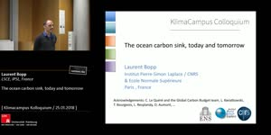 Thumbnail - The ocean carbon sink, today and tomorrow