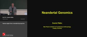 Thumbnail - Human origins from a neandertal perspective
