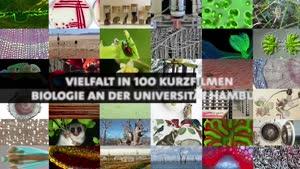 Thumbnail - Intro: Vielfalt der Biologie in 100 Filmen