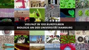 Thumbnail - Forschung am Fachbereich Biologie - Zum Leben erwacht