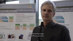 Thumbnail - Forschung am Fachbereich Biologie - Welche Mikrobiota gibt es im Elbeästuar?