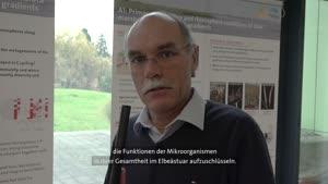 Thumbnail - Forschung am Fachbereich Biologie - Was leisten Mikroorganismen im Elbeästuar?