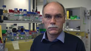Thumbnail - Prof. Dr. Wolfgang Streit stellt einen Forschungsschwerpunkt seiner AG vor