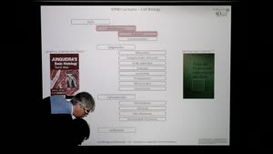 Thumbnail - Modul-EPNEI-Vorlesung-Zellbiologie-Teil-1.3-Folienerklärung