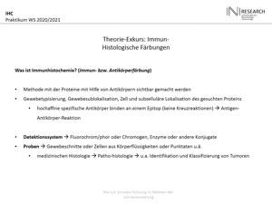 Thumbnail - Vorlesung 3 IHC