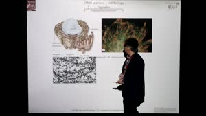 Thumbnail - Modul-EPNEI-Vorlesung-Zellbiologie-Teil-2.2-Folienerklärung01