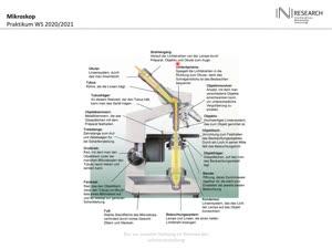 Miniaturansicht - Mikroskopie