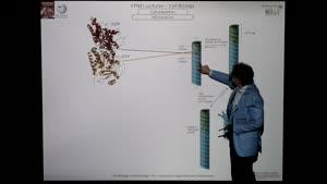 Thumbnail - Modul-EPNEI-Vorlesung-Zellbiologie-Teil-4.2-Folienerklärung