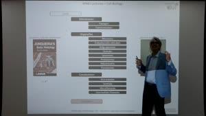 Thumbnail - Modul-EPNEI-Vorlesung-Zellbiologie-Teil-4.6-Übersichts-undFolienerklärung
