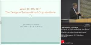 Miniaturansicht - What do international organizations do?