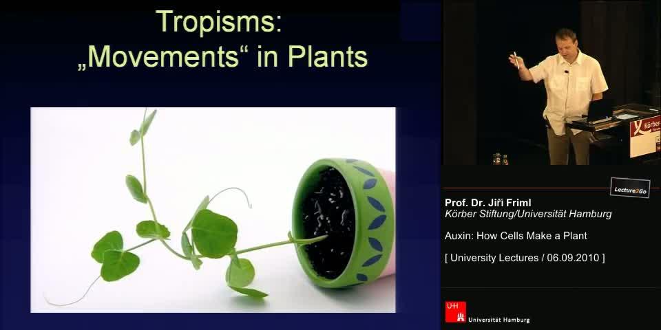 Thumbnail - Tropisms: