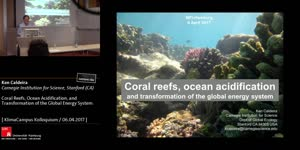 Miniaturansicht - Coral reefs, ocean acidification, and transformation of the global energy system