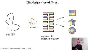 Miniaturansicht - Nucleotide design part 2 of 2