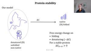 Miniaturansicht - Protein stability part 1 of 3